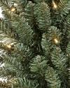 Classic Blue Spruce Wreath, Set of 2 by Balsam Hill Closeup 10