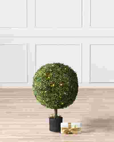 Battery-Operated Boxwood Topiary by Balsam Hill SSC 10