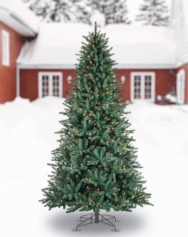 Oakville Outdoor Tree by Balsam Hill SSC 10