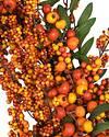 Fall Berry by Balsam Hill Closeup 20