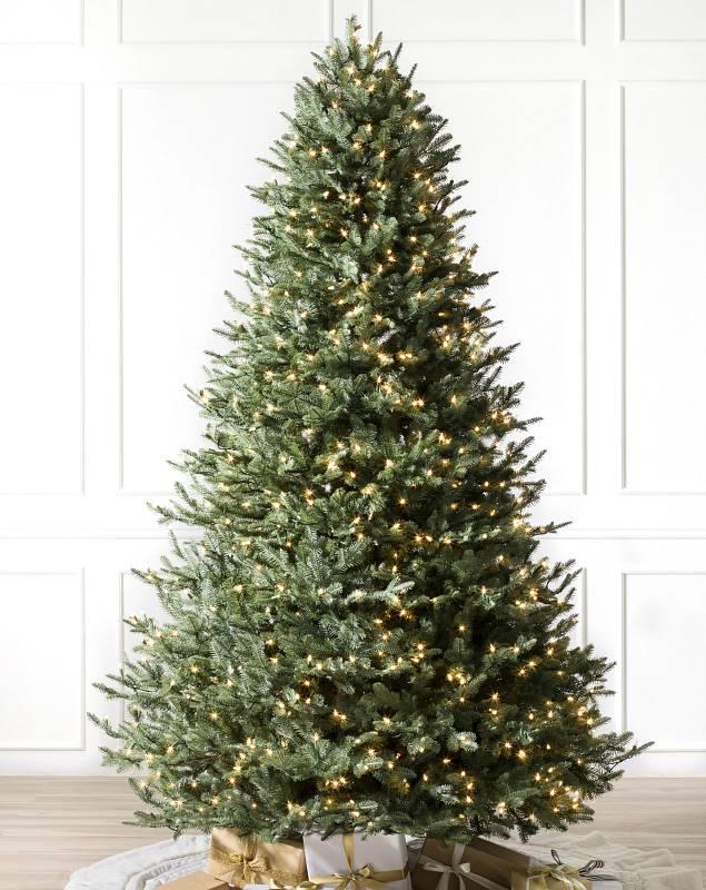 BH Balsam Fir Tree by Balsam Hill SSC 10