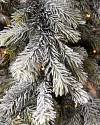 Frosted Forest Pine Tree by Balsam Hill Closeup 10