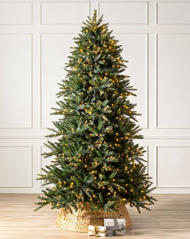 Mariana Spruce by Balsam Hill SSC 20