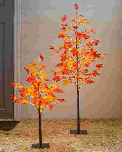 Outdoor LED Autumn Maple Tree by Balsam Hill Lifestyle 10