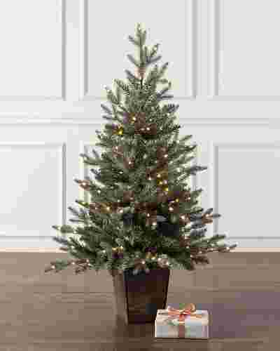 Potted Silver Spruce by Balsam Hill SSC