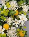 Hello Sunshine Wreath by Balsam Hill Closeup 10