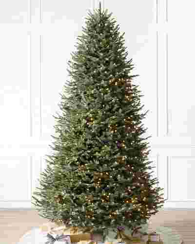 BH Balsam Fir Narrow Tree by Balsam Hill SSC 10