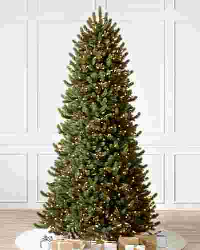 Vermont White Spruce Narrow by Balsam Hill SSC 10