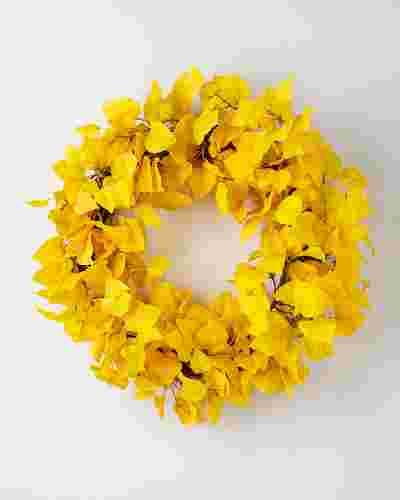 Golden Aspen Wreath SSC by Balsam Hill