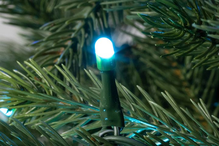 Close-up of Christmas tree light bulb