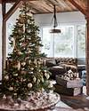 Grand Forest Ornament Set by Balsam Hill Lifestyle 20