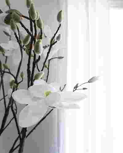 Blooming Magnolia Tree by Balsam Hill Blog 10