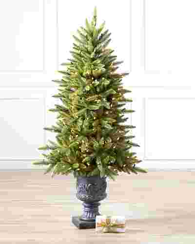 Highland Estate Potted Spruce Tree by Balsam Hill SSC 10