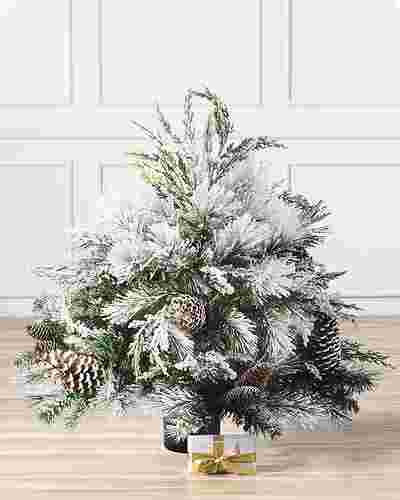 Outdoor Frosted Evergreen by Balsam Hill SSC 10