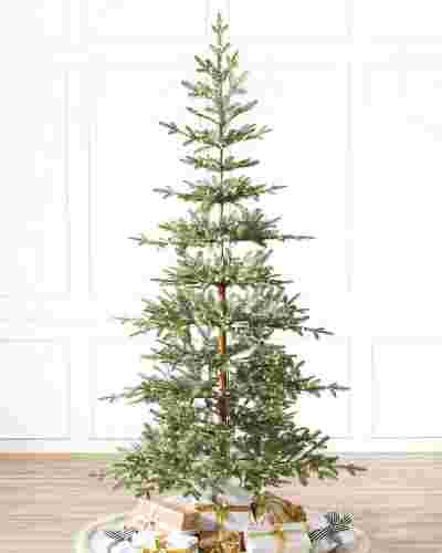 Alpine Balsam Fir by Balsam Hill SSC 10