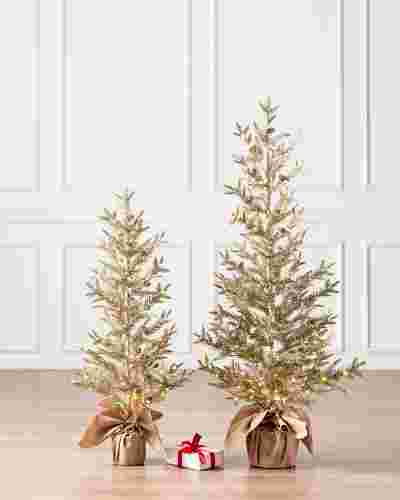 Gold Cypress Lighted Tree by Balsam Hill