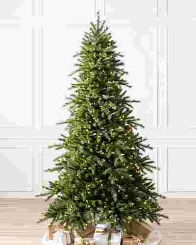 Norwegian Grand Fir Main by Balsam Hill