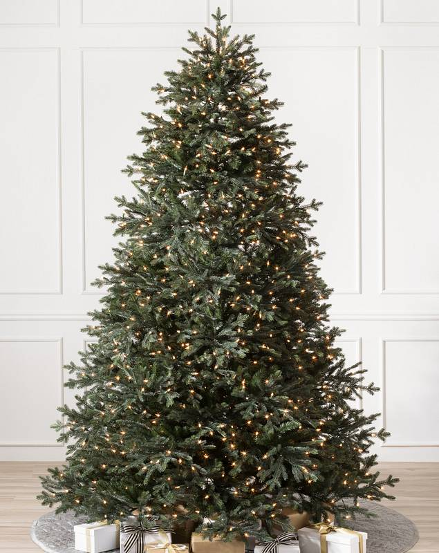 Norway Spruce Tree by Balsam Hill SSC 10