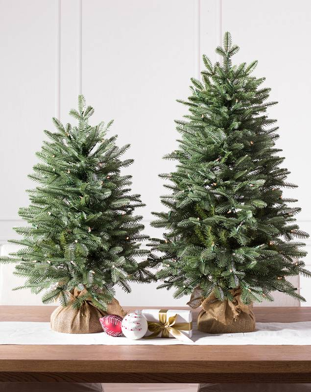 Balsam Fir Tabletop Tree by Balsam Hill Lifestyle 10