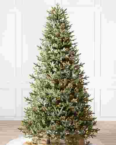 BH Fraser Fir Narrow Tree by Balsam Hill SSC 10