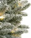Frosted Fraser Fir Foliage by Balsam Hill Detail