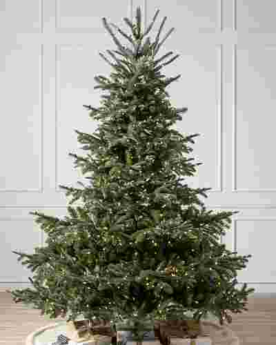 European Fir by Balsam Hill SSC 8
