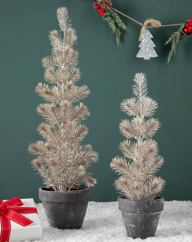 Gold Tabletop Potted Spruce Set of 2 by Balsam Hill SSC