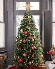 Ein Weihnachtsbaum mit roten und goldfarbenen Ornamenten.