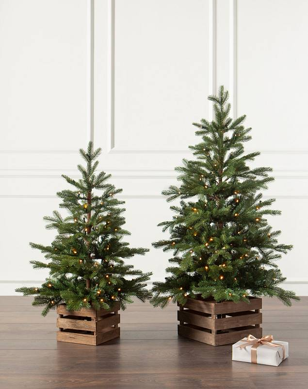 Country Farm Fir by Balsam Hill Lifestyle 10