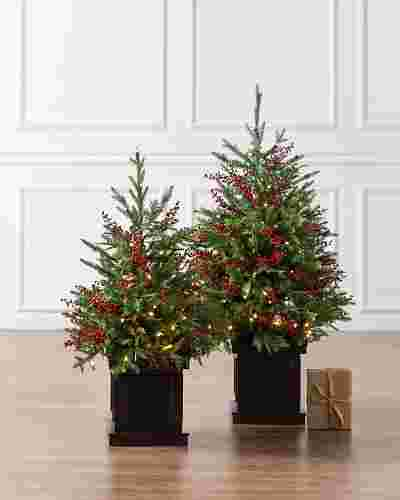 Outdoor Red Berry Evergreen Potted Tree by Balsam Hill