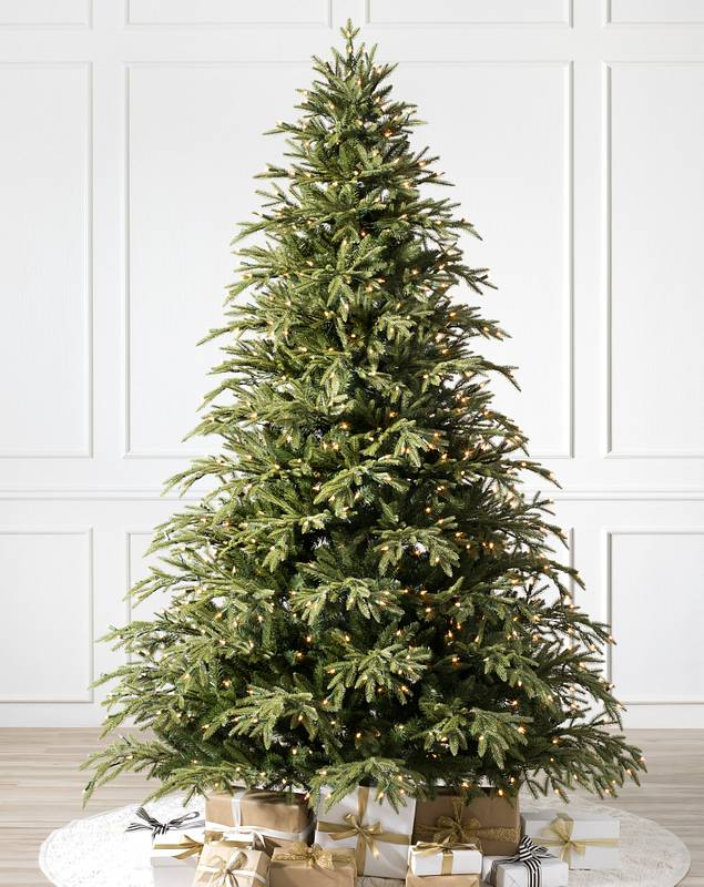 Brewer Spruce Tree by Balsam Hill SSC 10