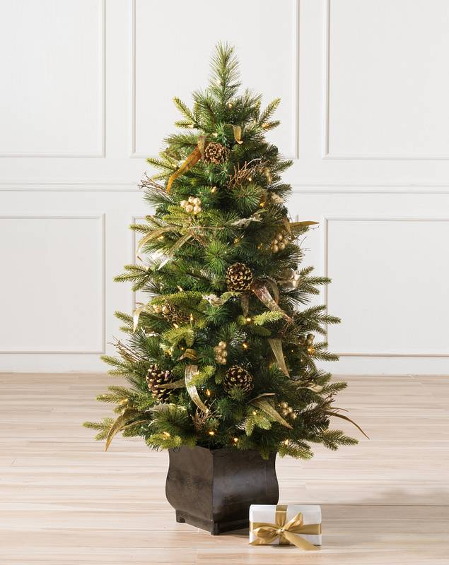 Coloma Golden Pine Potted Tree by Balsam Hill SSC 10