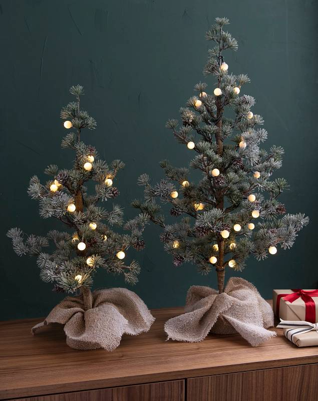 Frosted Pine Sapling Set of 2 by Balsam Hill