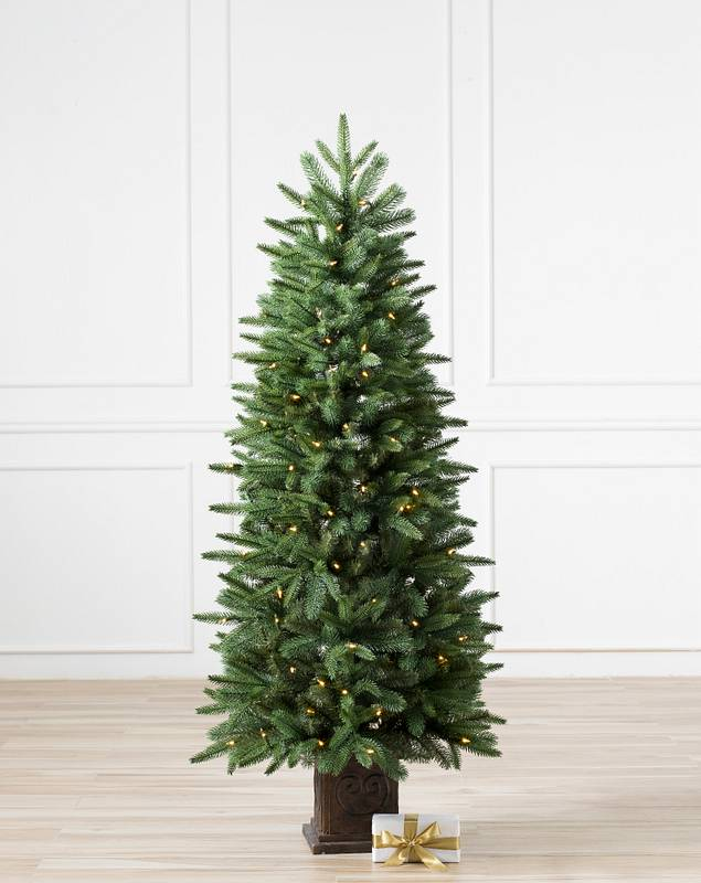 Windsor Potted Spruce Tree by Balsam Hill SSC 10