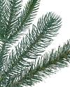 Windsor Potted Spruce Tree by Balsam Hill Detail